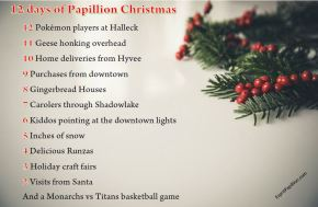 The 12 days of Papillion Christmas